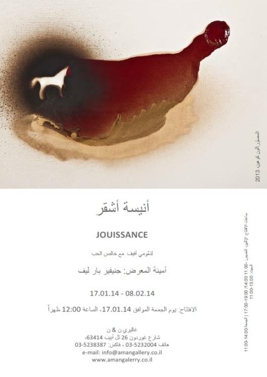 JOUISSANCE 17.01.14 - 08.02.14